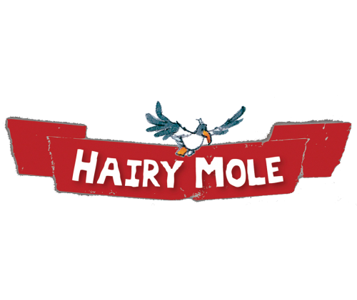Hairy Mole Reading Books Banner